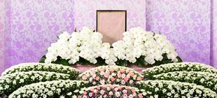 葬儀社の選び方がわからない